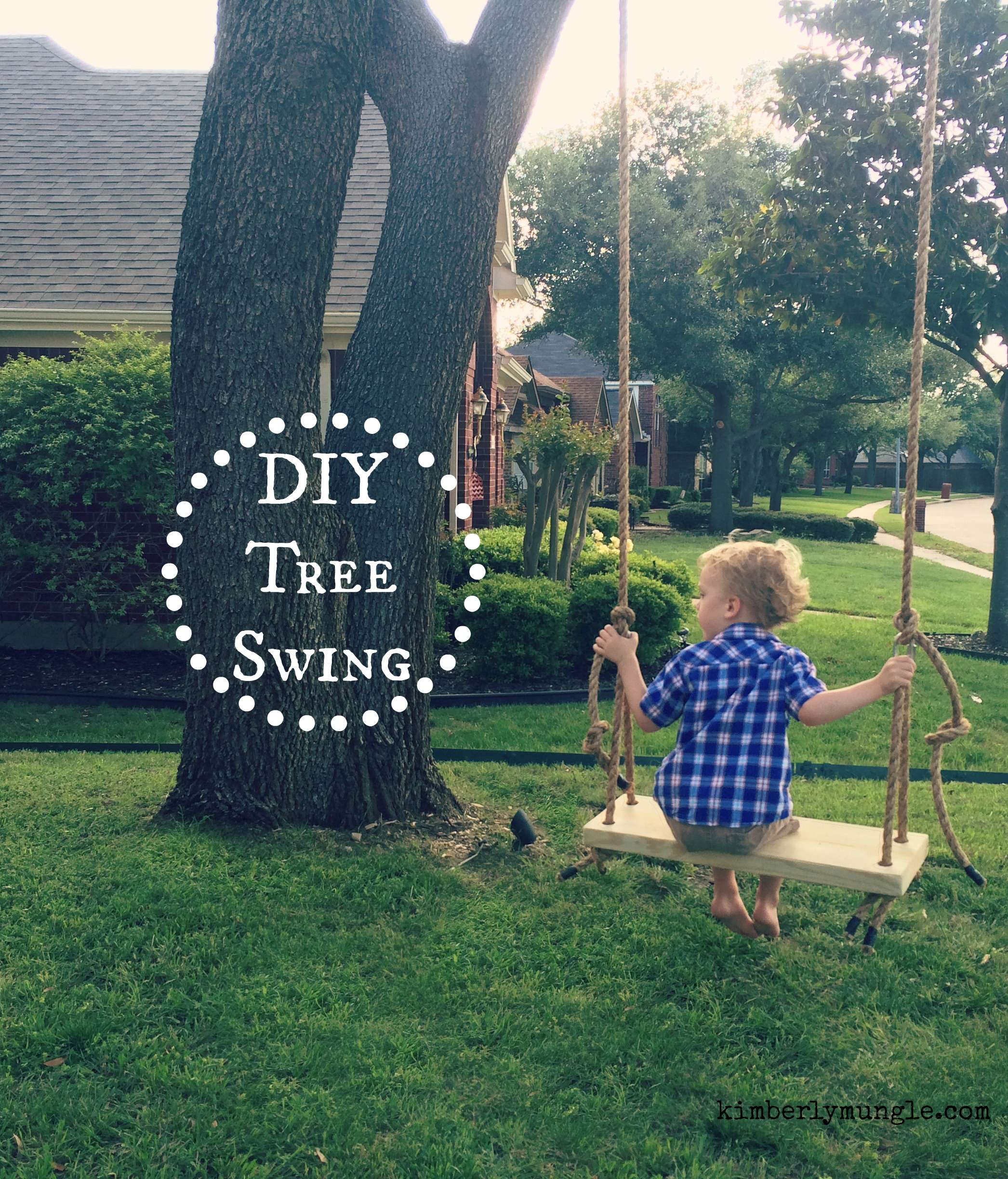 How to build a tree swing - Friends I Have Always Wanted A Tree Swing Like Seriously I Had A Swing Set When I Was A Kid Not An Old Fashioned Tree Swing I M Not Sure Why