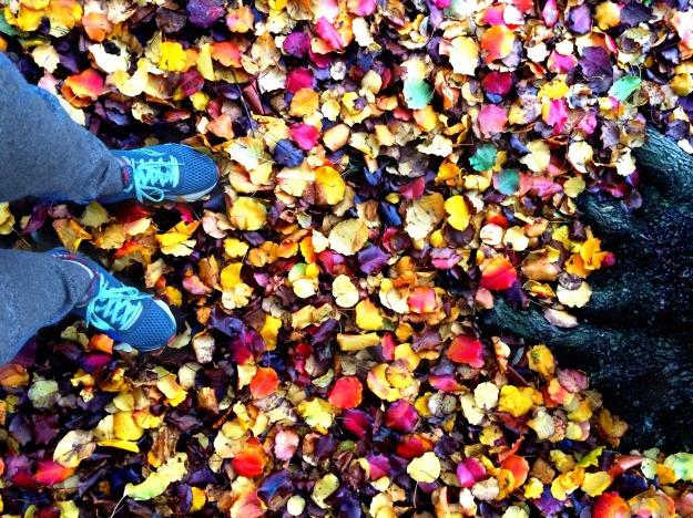 december leaves.1