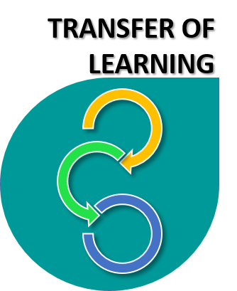 Transfer of Learning icon